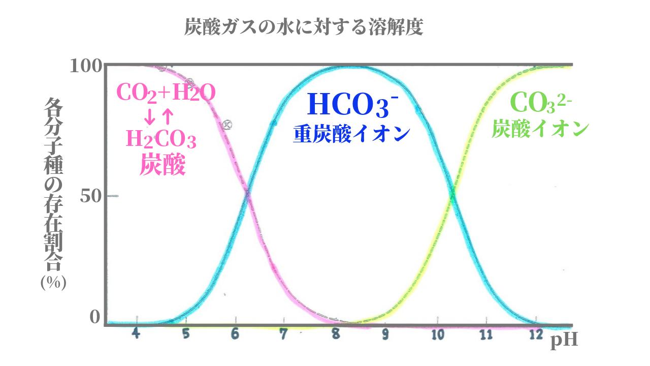 炭酸物質の変化